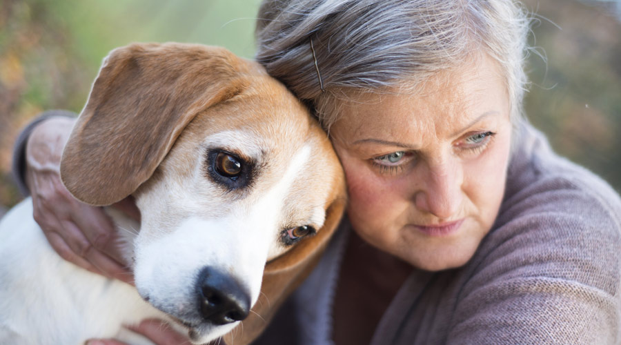 What natural remedy can I give my dog for arthritis?